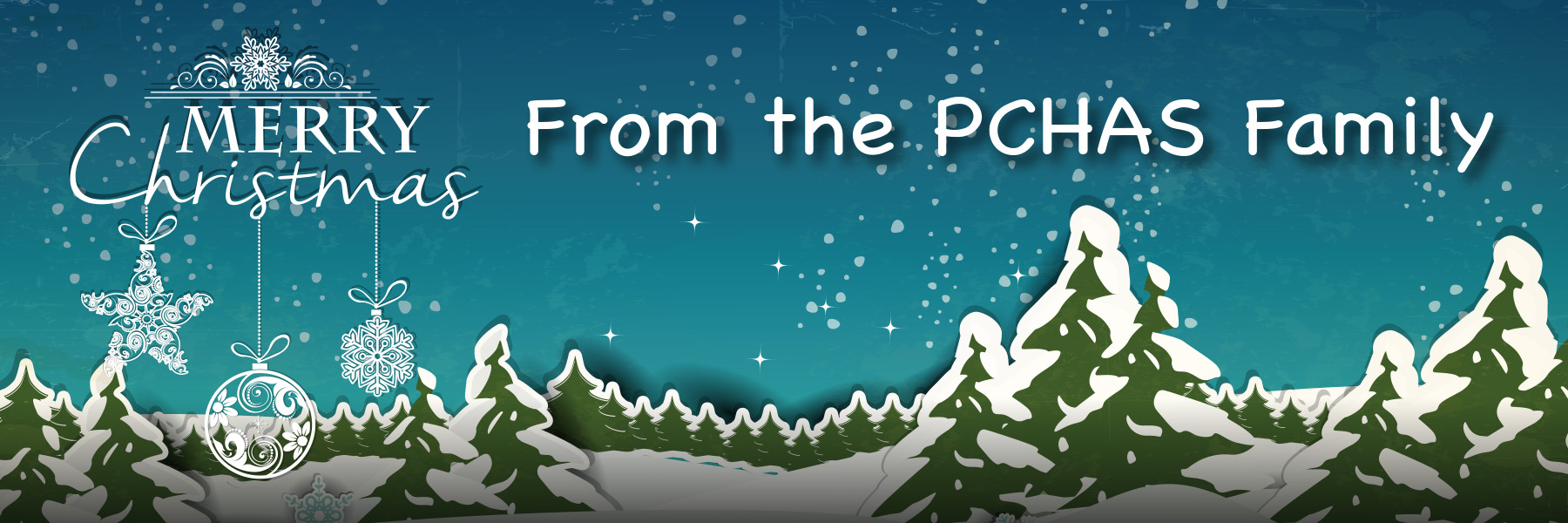 xmas_email-banner_pre-2-1